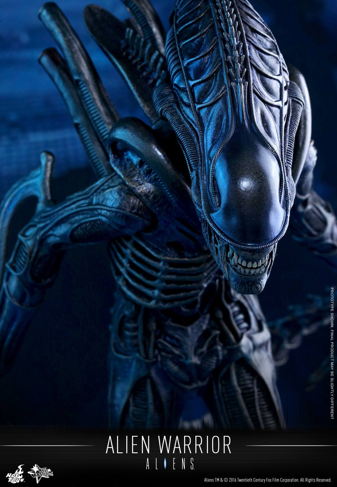 Pre-Order Hot Toys Alien Warrior Sixth Scale Figure